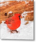 #2 Cardinal In Snow Metal Print