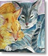 Kitty And Kat Metal Print