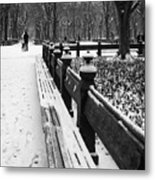 Central Park 8 Metal Print by Wayne Gill