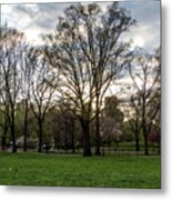 Central Park Views  Metal Print