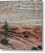 Checkerboard Mesa In Zion National Park Metal Print