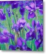 Close-up Of Purple Flowers Metal Print