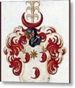 Coat Of Arms. Metal Print