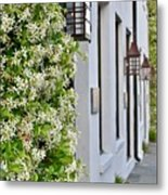 Colonial Home Exterior With Vertical Plants And Old Lanterns Displayed On The Side Of Home Metal Print