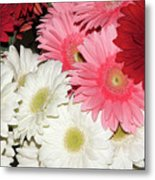 Colorful Gerber Metal Print