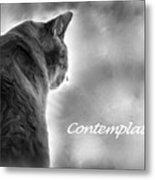 Contemplation Monochrome Metal Print