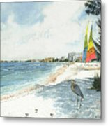 Blue Heron And Hobie Cats, Crescent Beach, Siesta Key Metal Print
