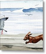 Dachshund At The Beach  Metal Print