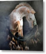 Dream Catcher Metal Print by Stephanie Laird