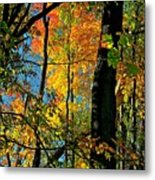 Fall Fire Works Metal Print