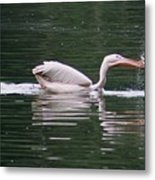 Fishing Pelican Metal Print