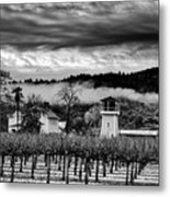 Fog Over The Vineyard Metal Print