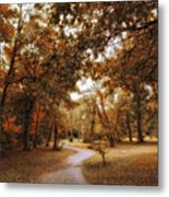 Golden Path Metal Print
