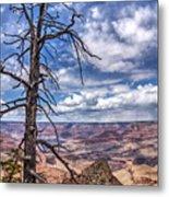 Grand Canyon National Park - South Rim Metal Print