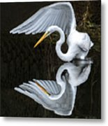 Great Egret Reflection Metal Print