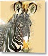 Grevys Zebra, Samburu, Kenya Metal Print