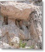 Grupo Nohoch Mul At The Coba Ruins  Metal Print