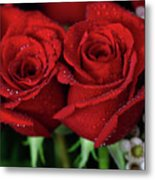 Happy Valentines Day Metal Print by Tracy Hall