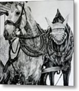 2 Horses Of Rothenburg 2000usd Metal Print