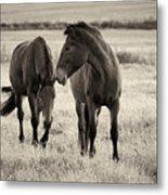 Horses Of The Fall  Bw Metal Print