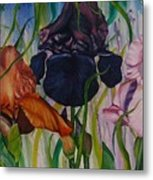 I Thought Tulips Metal Print by Shahid Muqaddim