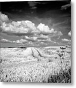 Infrared Landscape In Norway Metal Print