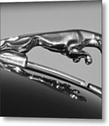 Jaguar Hood Ornament 2 Metal Print