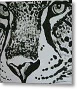 Jaguar Metal Print