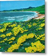 Jalama Beach Metal Print