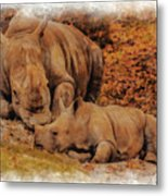 Jazi And Mom Metal Print