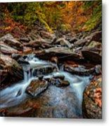 Kaaterskill Creek Metal Print