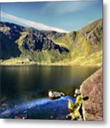 Levers Water Metal Print