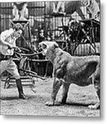 Lion Tamer, 1930s Metal Print