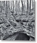 Living On The Edge Metal Print