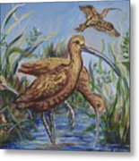 Longbilled Curlews Metal Print