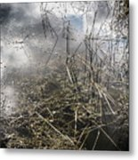 Morikami Gardens Metal Print