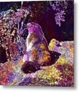 Mountain Marmot Wildlife Animals  Metal Print