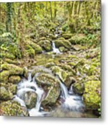 Mountain Stream In Autumn Metal Print