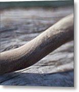 Olympic Peninsula Coast Metal Print