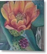Orange Cactus Blossom Metal Print