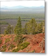 Oregon Landscape - View From Lava Butte Metal Print