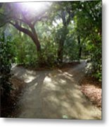2 Paths  Metal Print