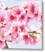Peach Flowers Metal Print