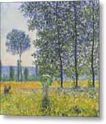 Poplars In The Sunlight Metal Print