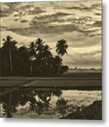 Rice Field Sunrise - Indonesia Metal Print