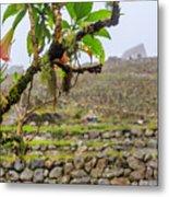 Ruins Of  Machu Picchu Metal Print
