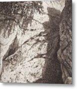 Scala 1892 27h16 Ivan Ivanovich Shishkin Metal Print