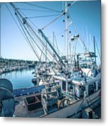 Scenery Around Monterey Bay California In Spring Metal Print