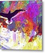 Seagull Blue Sky Freedom Air Fly  Metal Print