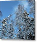 Snowy Trees Against A Blue Sky Metal Print